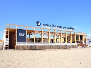 avex beach 中の様子